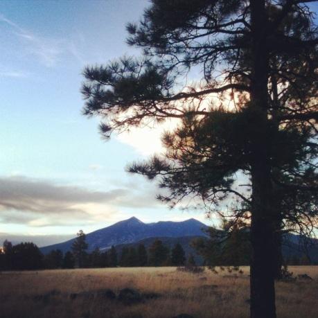 Walkin' In Flagstaff (c) 2014 Holly Troy