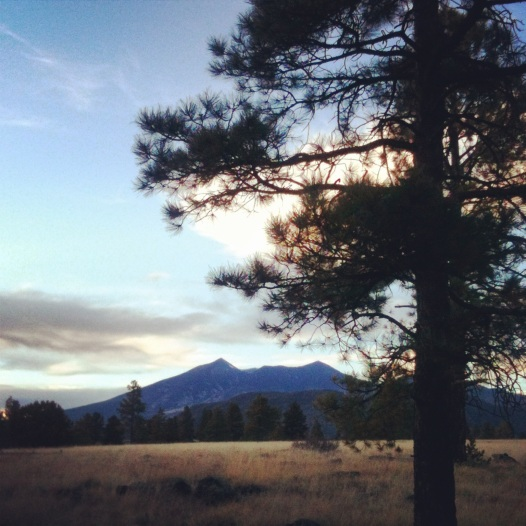 Walkin' In Flagstaff (c) 2014 Holly Troy