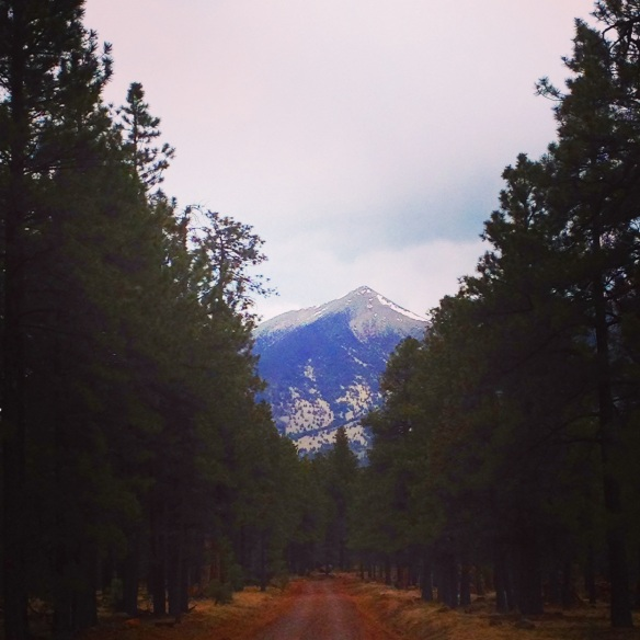 Schulz Creek Road and Peak (c) 2015 Holly Troy