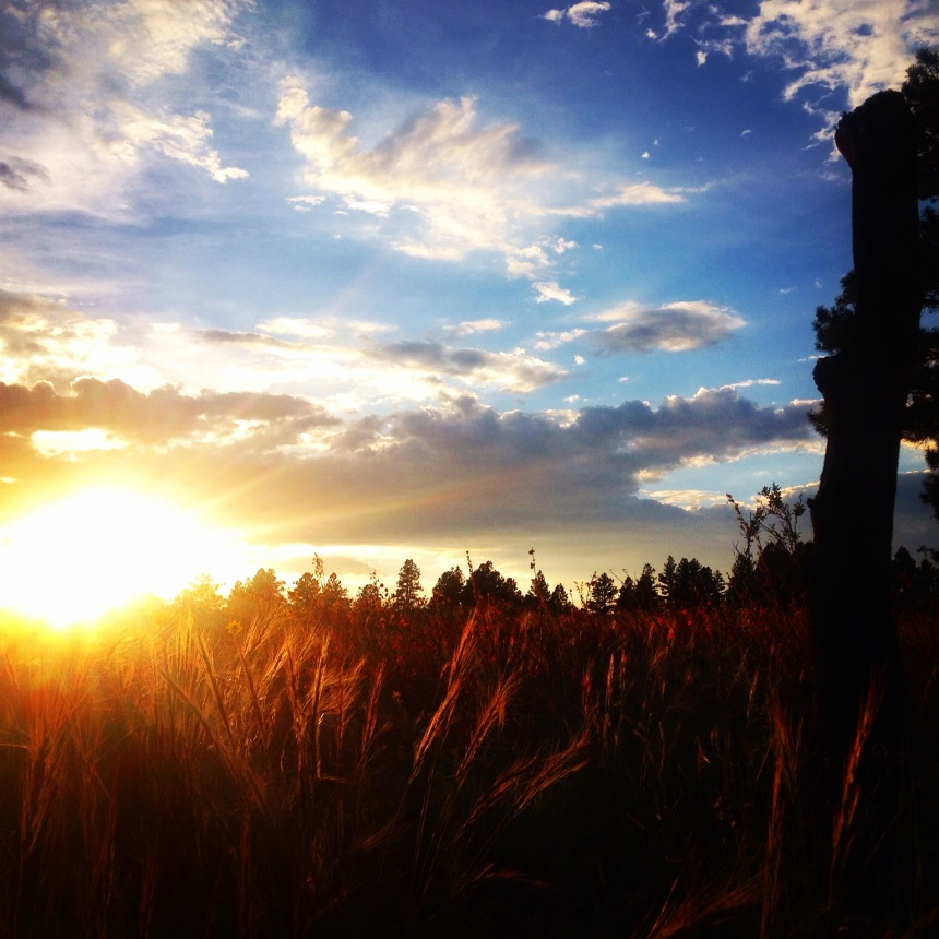 Sunset with Healing Heart at Forbidden Meadow (c) Holly Troy 2015