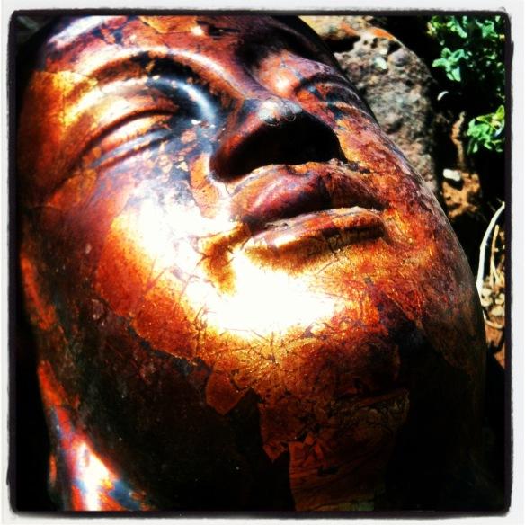 buddha sunning himself © Holly Troy 2014