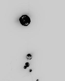 black moon, photograph